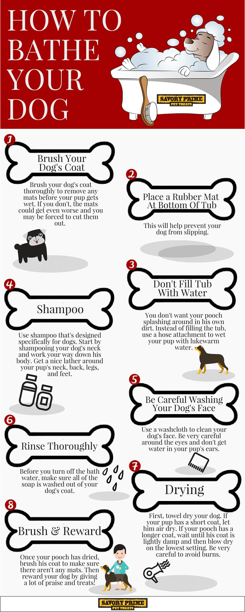 how often should i bathe my chihuahua how to bathe your dog infographic savory prime pet treats 5670